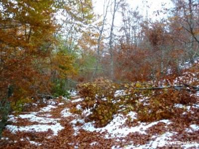 Parque Natural Somiedo;catarata del nervion foz de lumbier ruta rutas senderismo gipuzkoa
